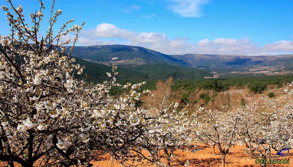 Valle--Caderechas-Burgos