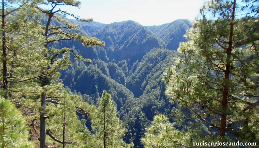 La Palma: ruta de los Nacientes de Marcos y Cordero