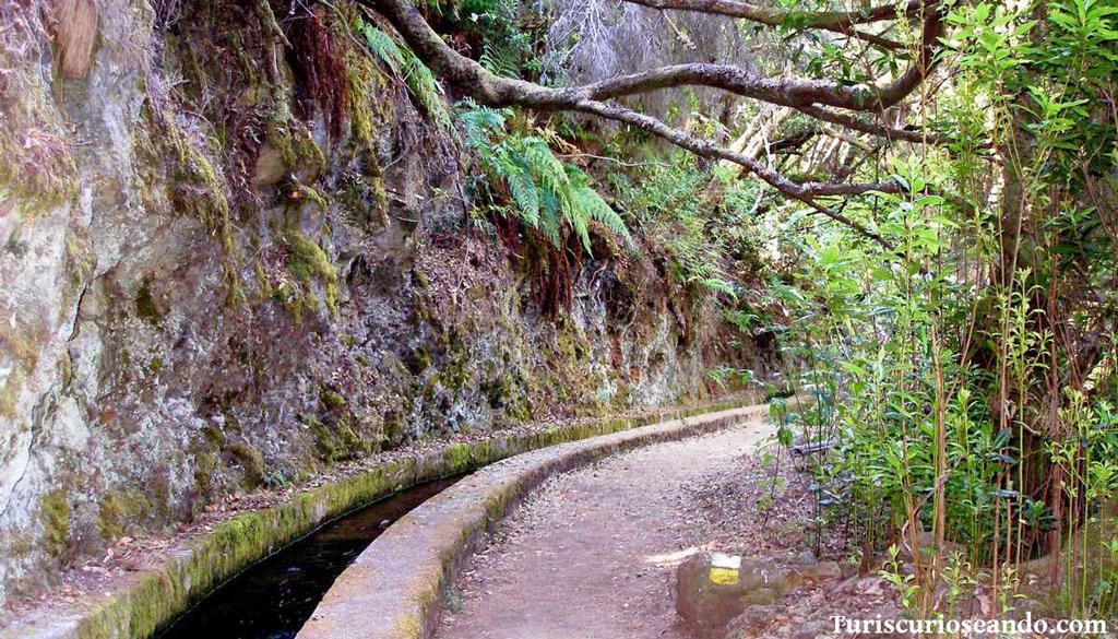 Ruta Marcos y Cordero La Palma