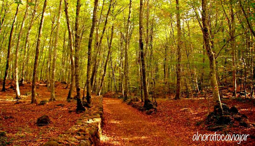 La Fageda de Jorda, LaGarrotxa. Turismo rural en Cataluña.