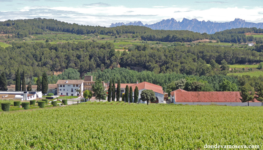 Enoturismo en el Penedés. Turismo rural en Cataluña.